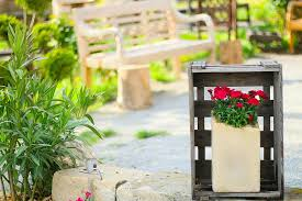 nature wood potted plants park bench