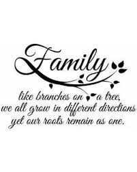Dana Decals Family Roots Wall Quotes Decal From Houzz Bhg Com Shop In 2020 Roots Quotes Family Tree Quotes Family Love Quotes