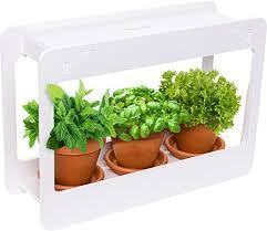 mindful design led indoor herb garden