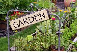 great vegetable garden