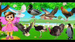 CON GÌ ĐÂY | CÁC CON VẬT NUÔI BIẾT BAY | NHẠC THIẾU NHI HAY Con Bò, Lợn,  Chó, Mèo, Vịt, Gà, Báo - YouTube