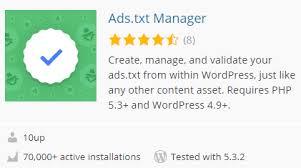 ads txt adsense file in wordpress