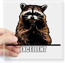 Amazon Com Cafepress Evil Raccoon Sticker Square Bumper Sticker Car Decal 3 X3 Small Or 5 X5 Large Home Kitchen
