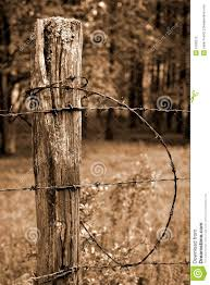 Fence Post And Barbed Wire Stock Photo Image Of Post 5706272