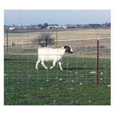 Oklahoma Steel Wire 0071 0 Sheep Goat Fence Panel 4ga 42inx16ft At Sutherlands