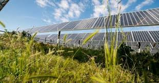 Facts Learn Stop Big Solar In Howard County