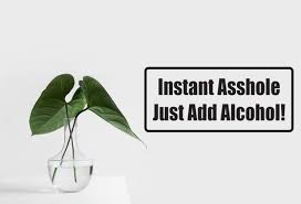 Instant Asshole Just Add Alcohol Car Or Wall Decal Fusion Decals
