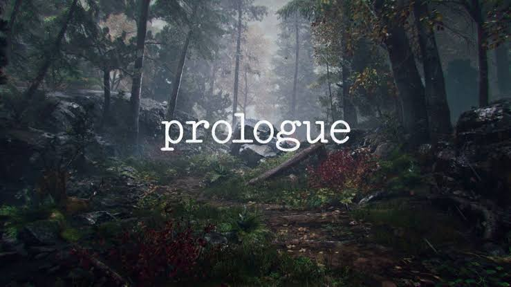 Image result for prologue pubg""