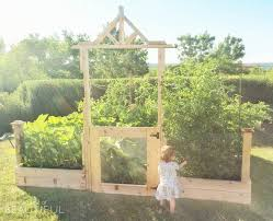square foot gardening tips what we ve