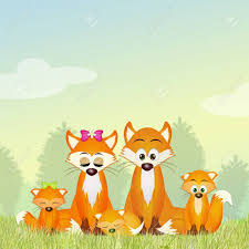 red fox family stock photo picture and