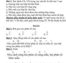 Bài 2: Xác định CN, VN trong các câu kế Ai thế nào ? sau: a, Gương mặt của  búp bê bầu bĩnh . b, Mái tóc của búp bê vàng óng.