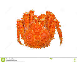Alaska red king crab stock image. Image ...