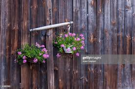 Hanging Flowerpots On Wooden Fence High Res Stock Photo Getty Images