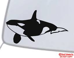 Orca Killer Whale Vinyl Decal Sticker Car Window Wall Bumper Cute Love Whales Ebay