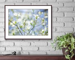 Dogwood Tree Photo Instant Download Printable Photo Wall Art Dogwood Blossoms Dogwood Flower Wall Art Digital Dow Photo Wall Art Flower Wall Art Photo Tree