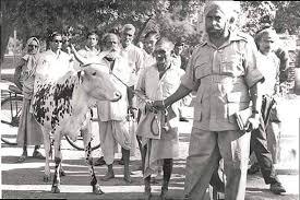 1966 का वह गो-हत्या बंदी आंदोलन ...