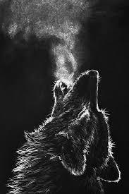 cool black wolf wallpaper 82767vp jpg