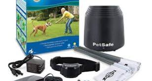 Best Wireless Dog Fence On Walmart 2020 Pet Diaries