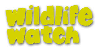 Wildlife Watch - Den Building (5yrs+) Tickets, Tue 26 May 2020 at ...