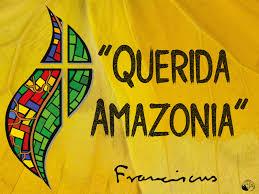 Para quiénes es, o no es querida la «Querida Amazonía»? – Diario ...