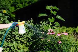 7 best hose end sprayers reviews of