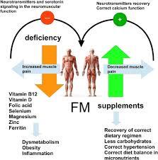 fibromyalgia and nutrition theutic