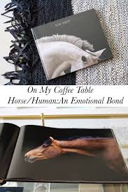on my coffee table horse human an