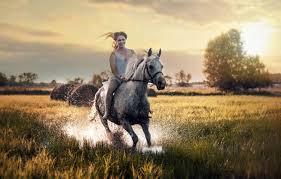 horse wallpaper 133 5337x3409 pixel