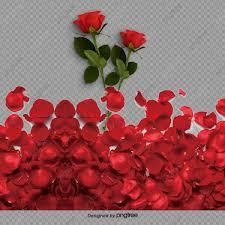 بتلات الورد ماء الورد قطرات الماء Png وملف Psd للتحميل مجانا