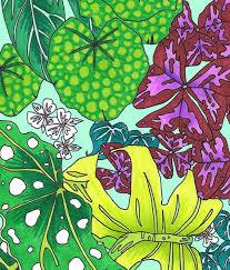 botanical prints home wall decor
