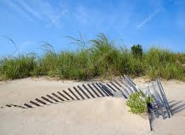 Sand Dune With Fence And Dune Grass Stock Photo C Jomo333 29742917