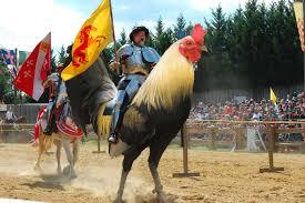 أكثر صور مضحكة مع الدجاج بالفوتوشوب شبكة انت والعالم