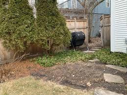 diy backyard vegetable garden with