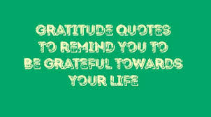 gratitude quotes to remind you to be grateful