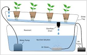 hydroponic indoor growing systems