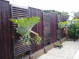 Modern Fence Screening Ideas Privacy Screens Stained Bamboo Fence Fence Design Bamboo Fence Bamboo Screening Fence