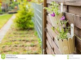 Flower Pot Hanging On Wooden Fence Stock Photo Image Of Beauty Container 91618280