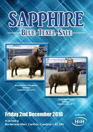 Sapphire Blue Texel Sheep Sale 021216 ...