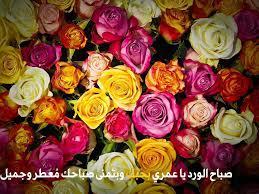 صور صباح الورد واجمل رسائل صباحية مكتوبة موقع مصري