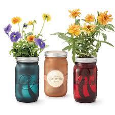mason jar indoor flower garden window