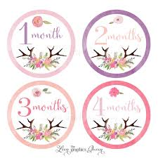 Baby Month Stickers Flower Antler Stickers Leen The Graphics Queen
