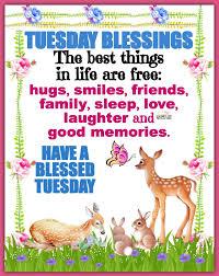 The Horse Mafia - Tuesday Blessings | Facebook