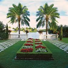 top uses of palm trees in garden design