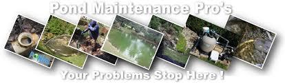 pond maintenance cleaning repair