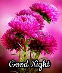good night images for husband husband