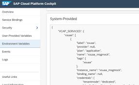 sap cloud platform backend service