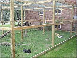 Free Outdoor Cat Enclosure Plans Cats Can Roam The Great Outdoors In This Spacious Enclosure Photo Cat Enclosure Outdoor Cats Outdoor Cat Enclosure