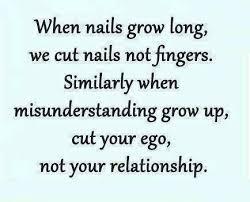 misunderstanding quotes ego quotes wise quotes misunderstood