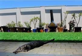 Oscillot North America Revolutionary Cat Proof Fence Kits