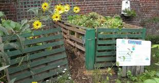 learn the art of composting in your